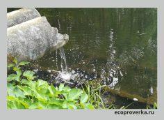 Сброс сточных вод без очистки