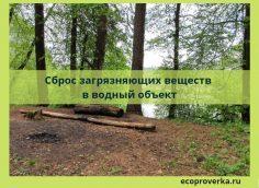 Сброс загрязняющих веществ в водный объект