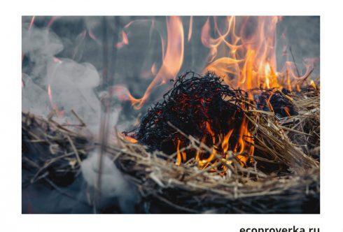 Сжигание отходов