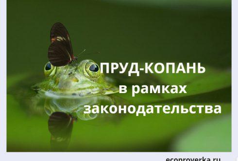 лягушка в пруде-копани